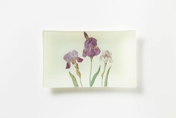 foglie-e-fiori-01