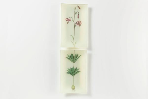 foglie-e-fiori-03