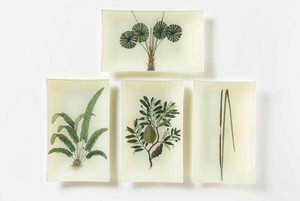 foglie-e-fiori-04