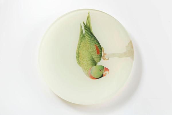 vassoi-animali-09